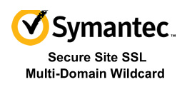 Symantec Secure Site SAN 多域名通配符 SSL 证书